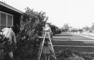 Fred, Grace, and their oldest son, Robert, working in the front yard in 1954